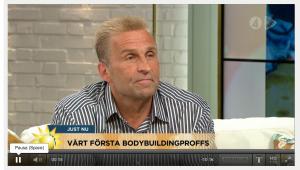 TV4 nyhetsmorgon Mats Kardell Jenny strömstedt Steffo